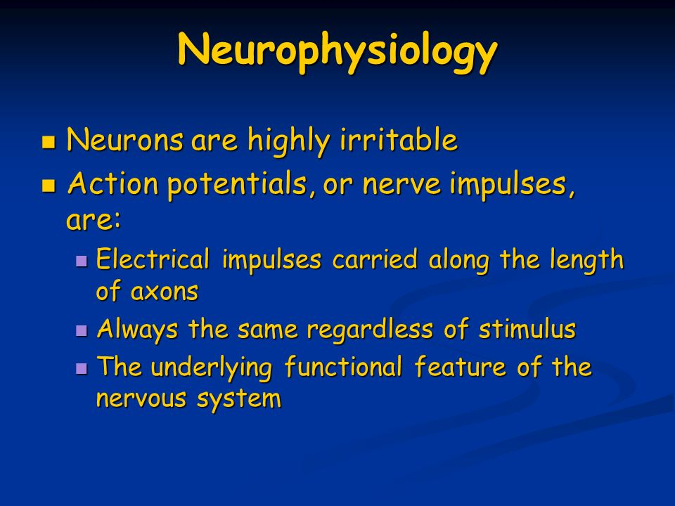 Neurophysiology Neurons are highly irritable