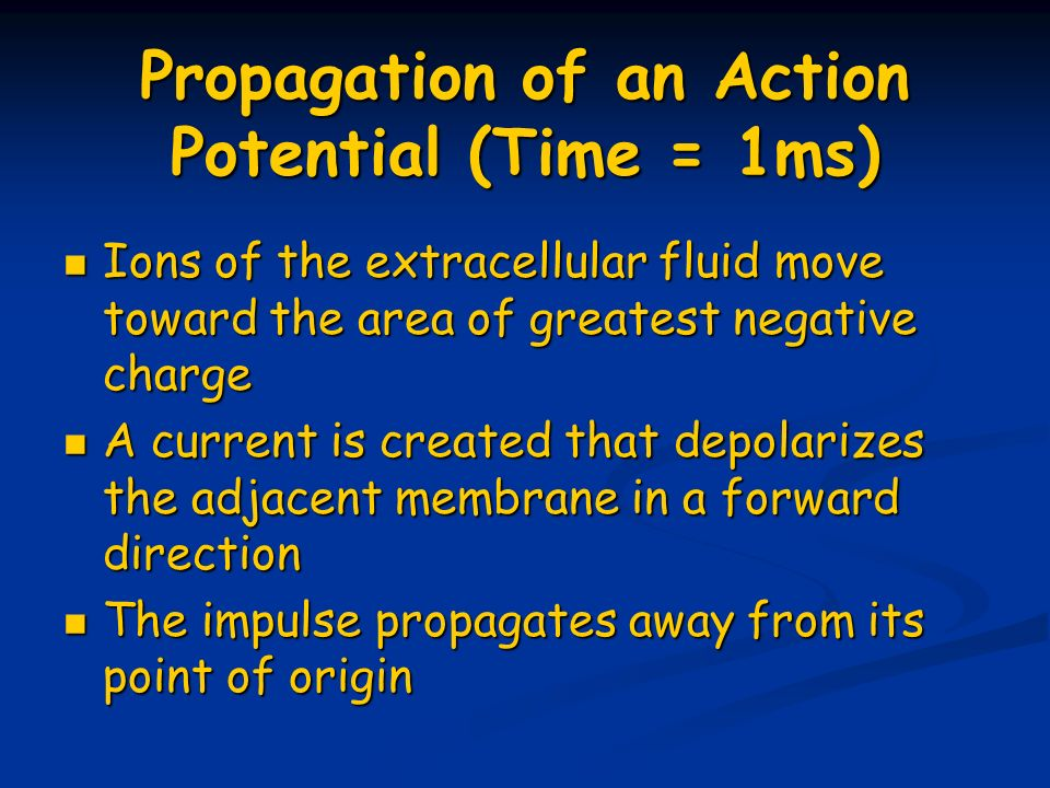Propagation of an Action Potential (Time = 1ms)