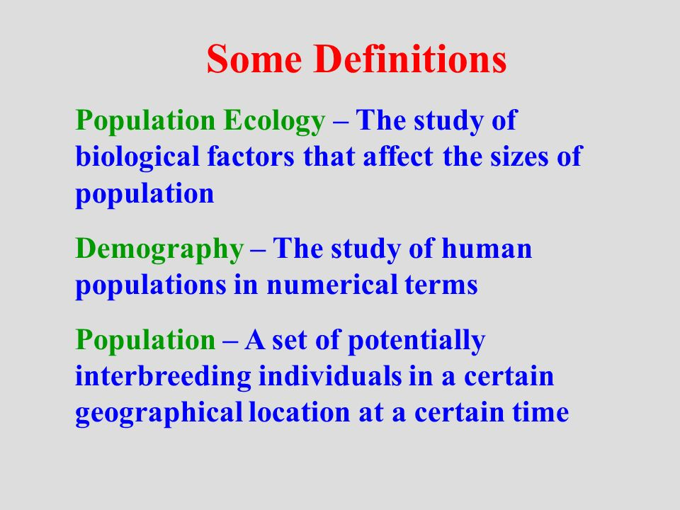 What do population ecologists study