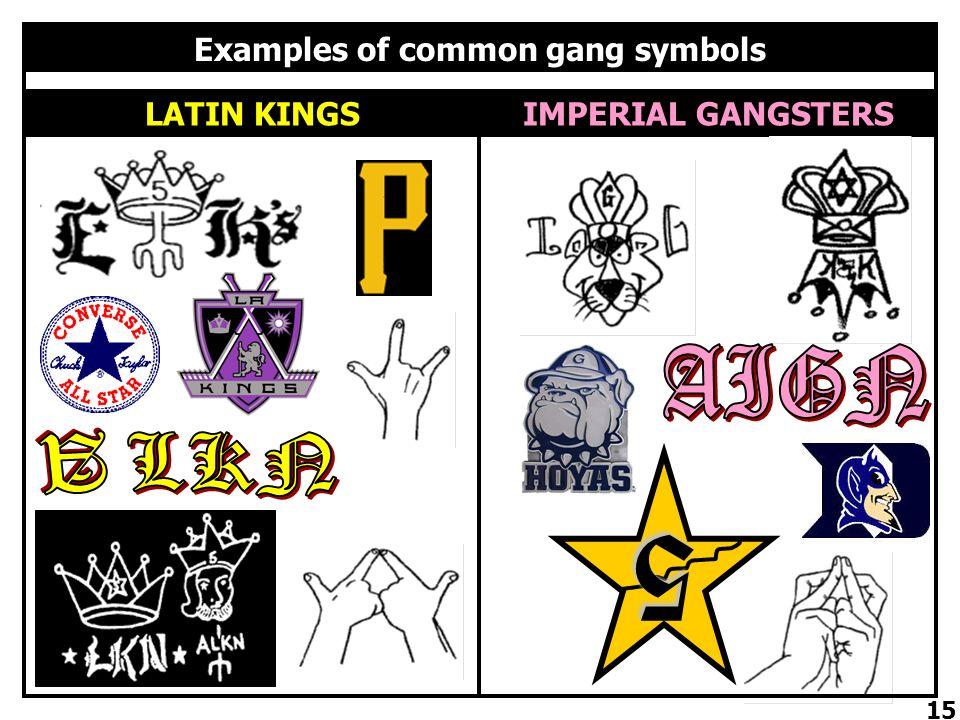 The Leyden Community Gangs Ppt Download