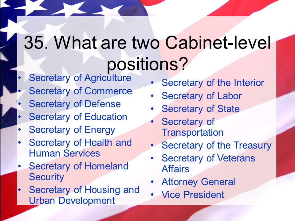 Two Cabinet Level Positions - thesecretconsul.com