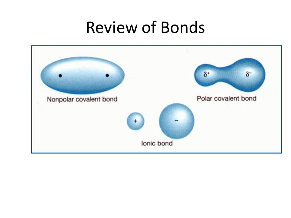 Review of Bonds