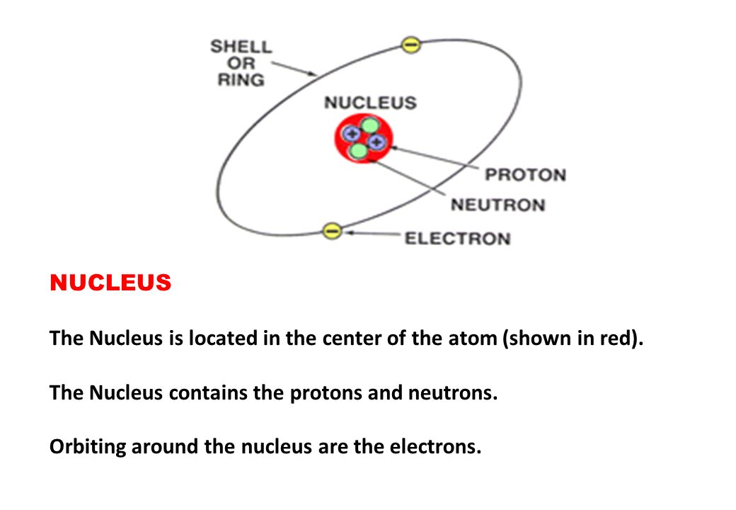 NUCLEUS The Nucleus is located in the center of the atom (shown in red). The Nucleus contains the protons and neutrons.