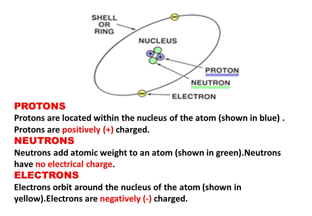 PROTONS Protons are located within the nucleus of the atom (shown in blue) . Protons are positively (+) charged.