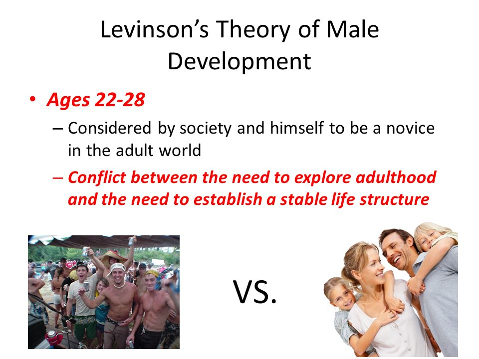 levinsons stages of adult development