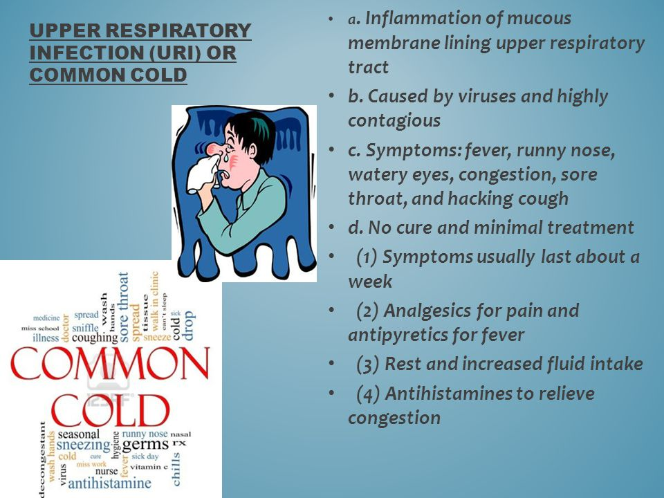 Upper respiratory infection (URI) or common cold