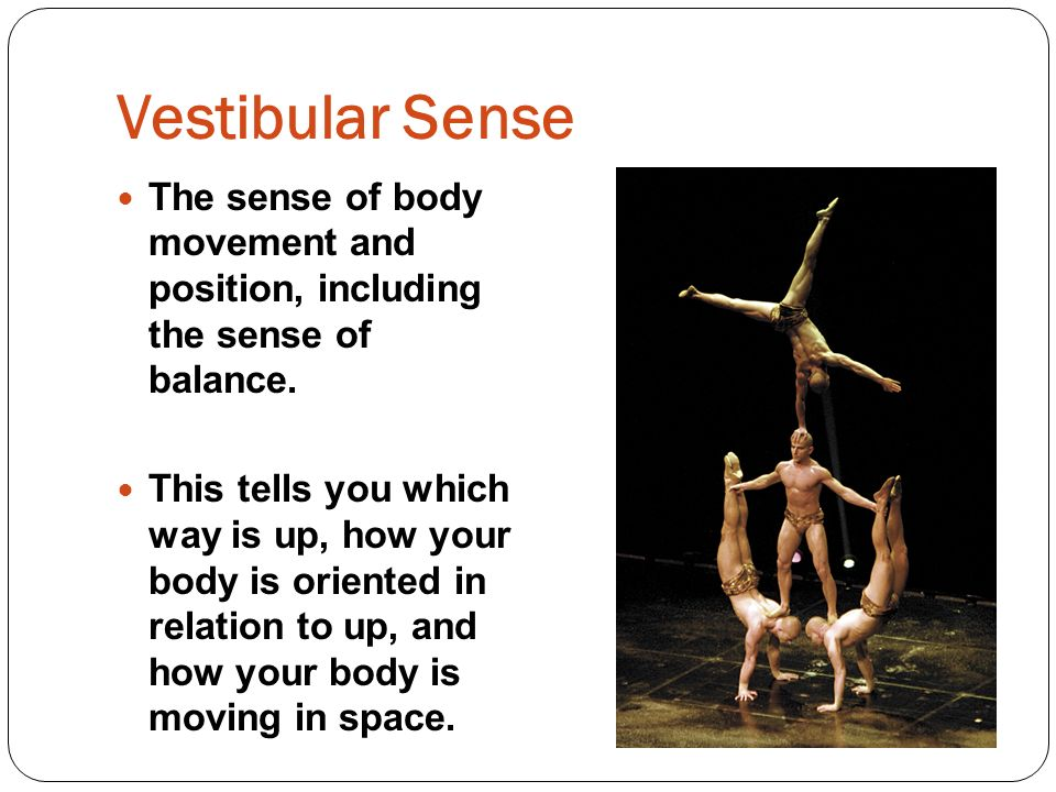 Vestibular Sense The sense of body movement and position, including the sense of balance.