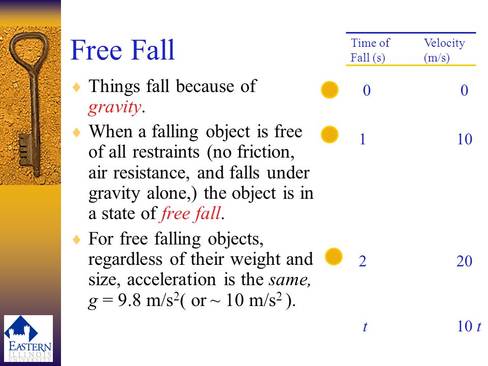 Free Fall Things fall because of gravity.