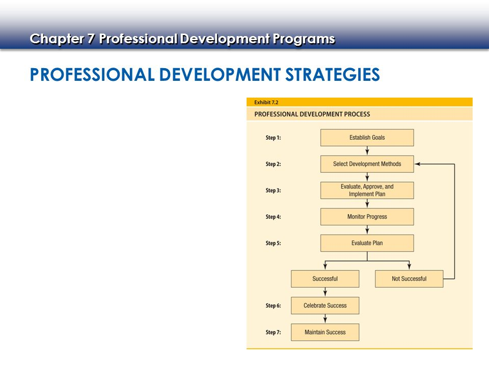 professional development for strategical managers 1 interview questions for human resource managers  evaluation and professional development evaluating employee performance is a final key strategy for human resource development some .