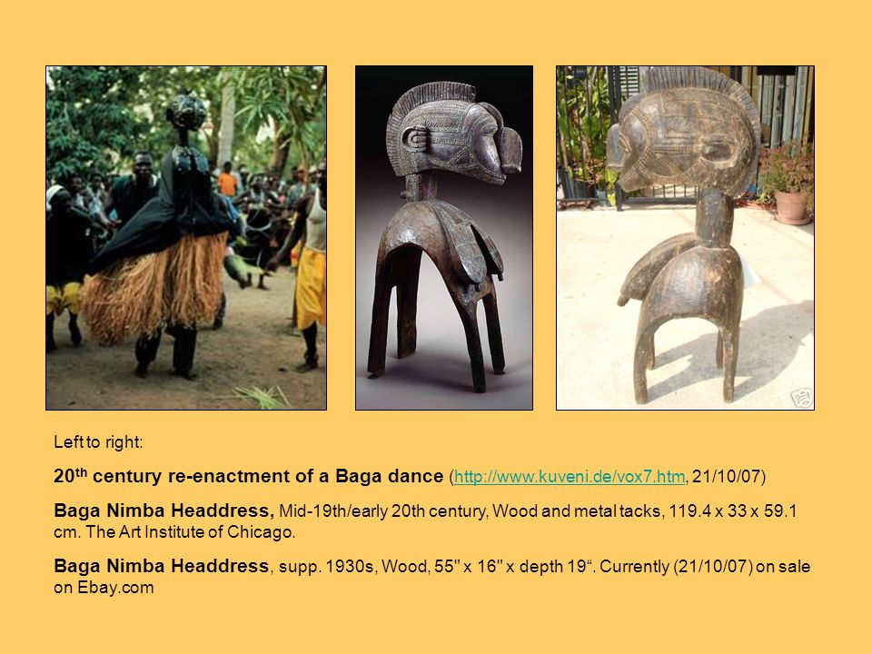 In particular Baga Nimba headdresses are sought after by collectors of African art. They were worn on top of the head with the four base posts attached at the bottom to a hoop encircling the dancer's chest and back. The costume consisted of a bulky palm-fibre undergarment suspended from the hoop to the ground and a dark cloth tied at the neck of the headdress, exposing the breasts, and falling to the waist. Baga Nimba headdresses have bee documented as early as 1886 (Coffinières de Nordeck) and was used by the Baga, Sitemu, Pukur and Buluñits until the late 1950s.