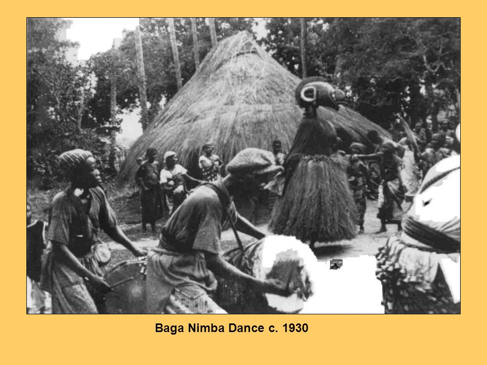 Nimba appeared at the rice harvest festivals, during planting, as well as at marriages, births, funerals and rituals of ancestral commemoration. She represented a universal mother, honoured because she had borne many children and nursed them successfully. Flawless in character, exquisitely coiffured and cosmetically refined with continual polishing with oil before each appearance, she presented the villagers with an inspiring image of nobility and prosperity. Through her effecting power engendered in ritual, young women derived the strength to bear children and to nurture them to adulthood, the ancestors were encouraged to participate in the continuance of community well-being, rain was induced to fall and young men were driven to feats of cooperative excellence in agriculture.