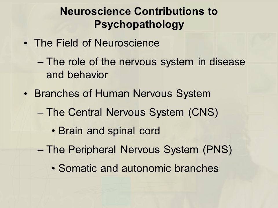 Neuroscience Contributions to Psychopathology