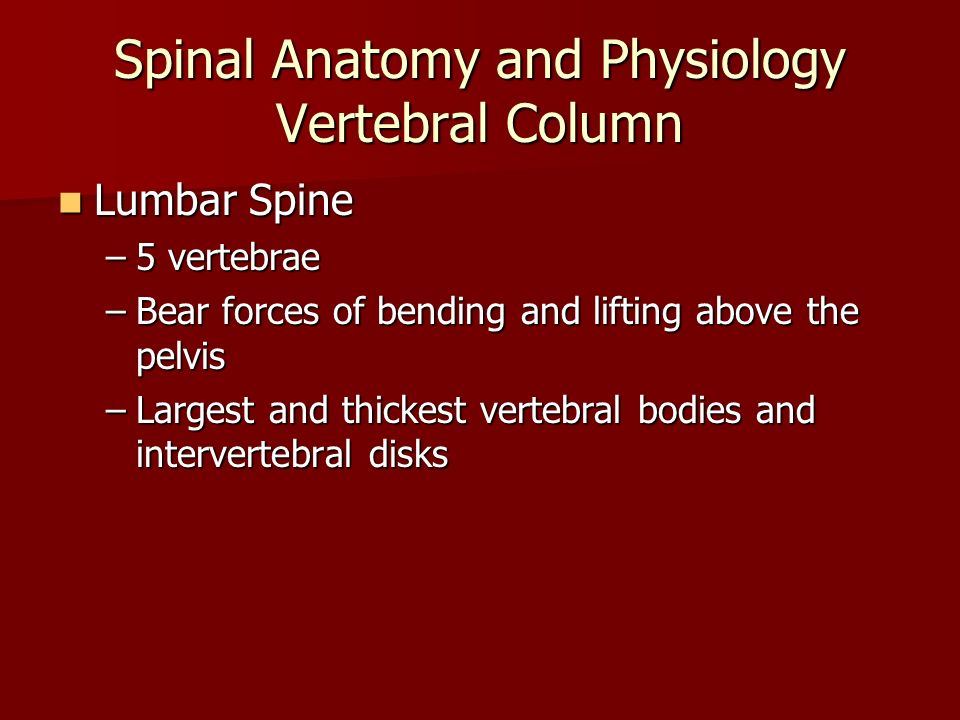 Upper Extremity Trauma - ppt download
