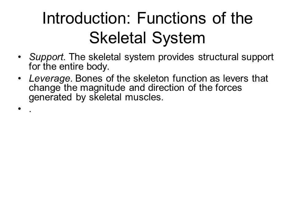 introduction to bones in the body The skeletal system is an important organ system it is in charge of supporting the  structure of the body the skeletal system includes all the bones in your body.