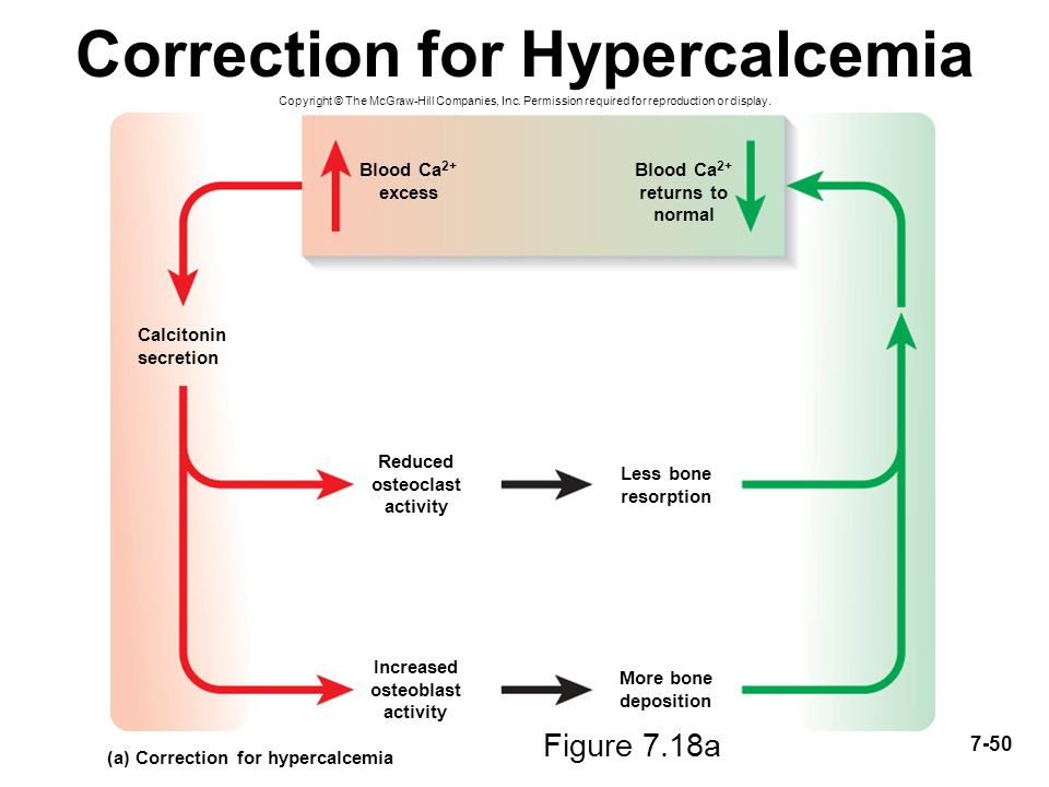 a description of the excess dietary protein and hypercalcemia on calcium Ketotic hypercalcemia: a case series and but is consistent with excess bone resorption and impaired calcium with hypercalcemia his calcium was.