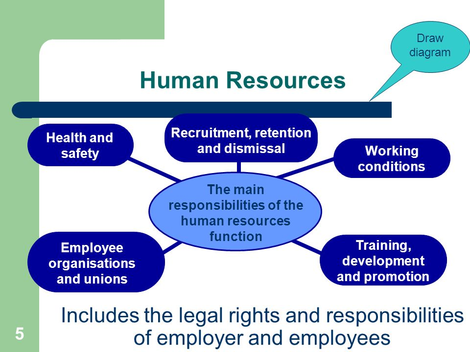 five functional areas within the hr department List of the major functions of the human resource unit brand x pictures/brand x pictures/getty images related articles 1 [human resources management] | functional areas of human resources management 2 [human resource manager] the hr department finds the right people for open positions.