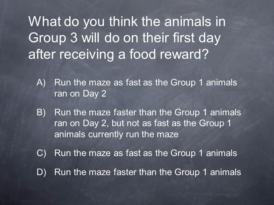 What do you think the animals in Group 3 will do on their first day after receiving a food reward