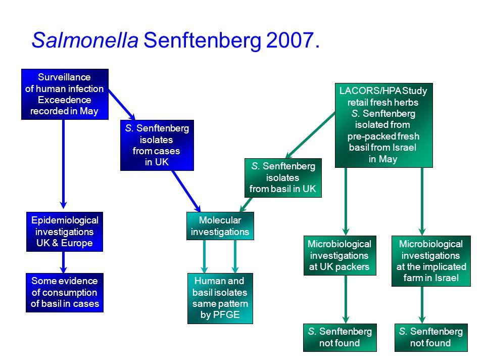 Salmonella Senftenberg 2007.
