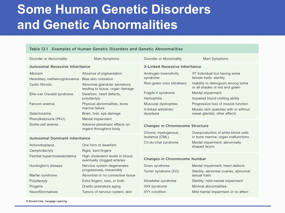 Chromosomes and Human Inheritance ppt video online download – Human Genetic Disorders Worksheet