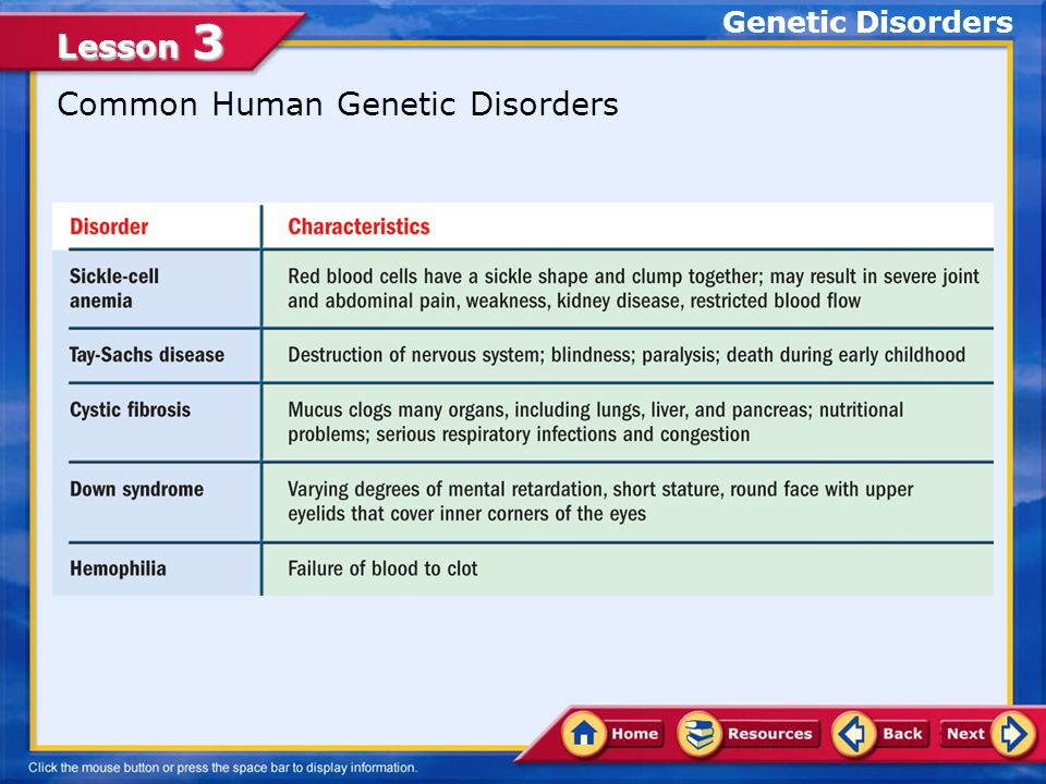 Family members often share a strong physical resemblance ppt – Human Genetic Disorders Worksheet