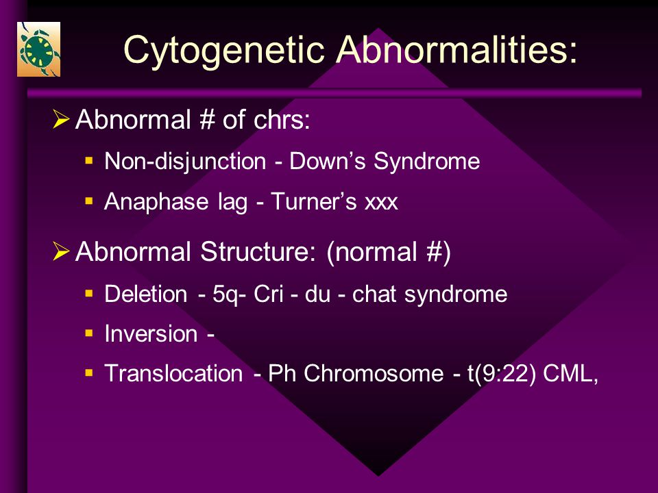 an introduction to the analysis of the cri du chat syndrome Cri du chat syndrome is a caused by a deletion of a small piece of chromosome 5 and is estimated to occur in around 1 in 15,000 to 50,000 babies born  analysis or .