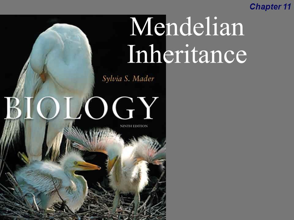 biology 9th ed sylvia mader ppt download. Black Bedroom Furniture Sets. Home Design Ideas