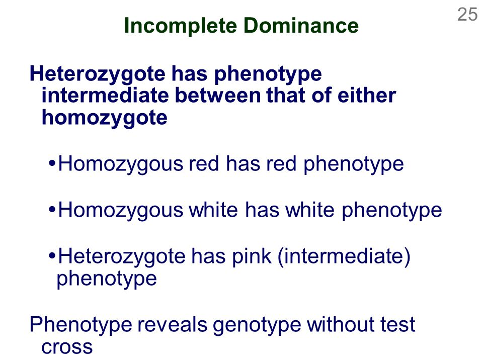 Incomplete Dominance Heterozygote has phenotype intermediate between that of either homozygote. Homozygous red has red phenotype.