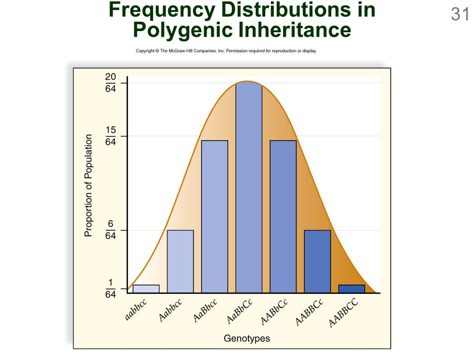 Frequency Distributions in Polygenic Inheritance
