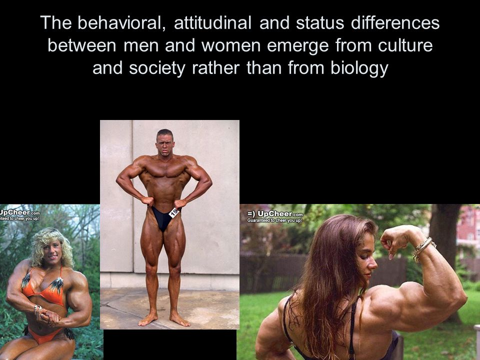 The behavioral, attitudinal and status differences between men and women emerge from culture and society rather than from biology