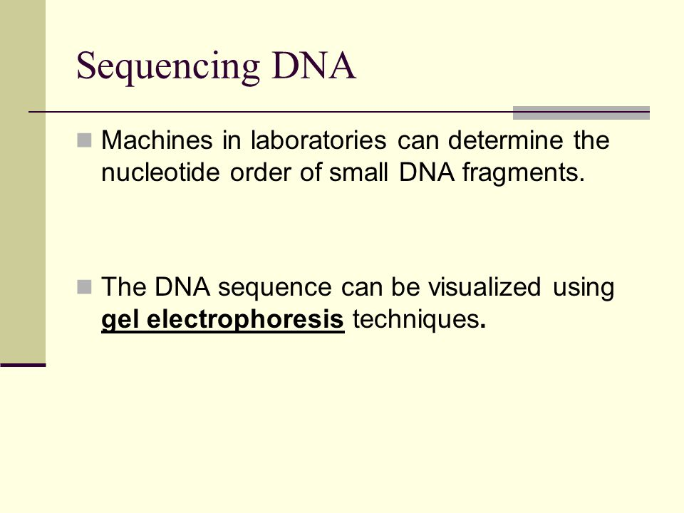 Sequencing DNA Machines in laboratories can determine the nucleotide order of small DNA fragments.