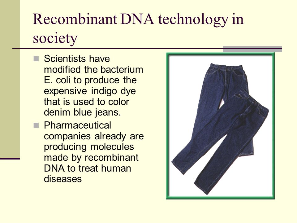 Recombinant DNA technology in society