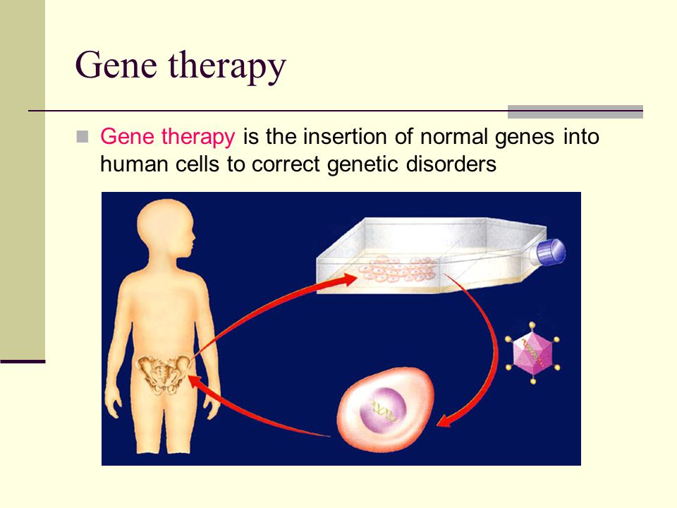 Gene therapy Gene therapy is the insertion of normal genes into human cells to correct genetic disorders.