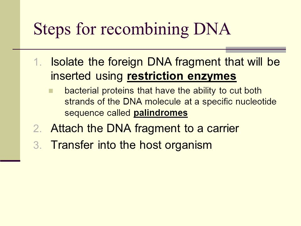 Steps for recombining DNA