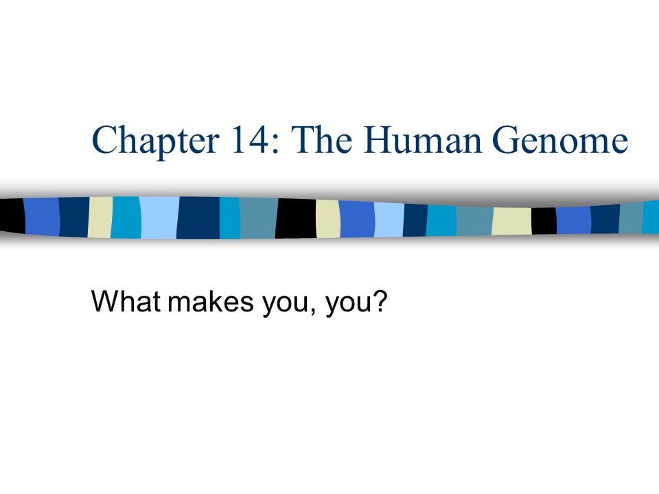 Chapter 14: The Human Genome