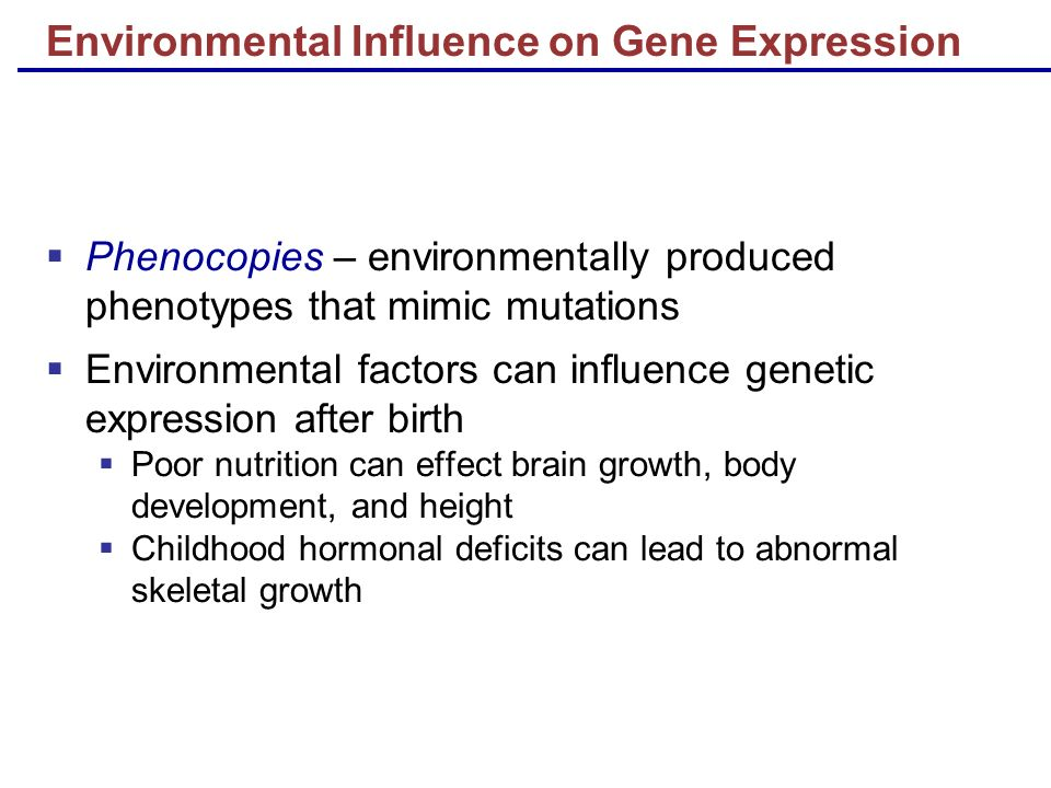 human development heredity environment parental influence While some aspects of development may be strongly influenced by biology, environmental influences may also play a role for example, the timing of when the onset of puberty occurs is largely the results of heredity, but environmental factors such as nutrition can also have an effect.