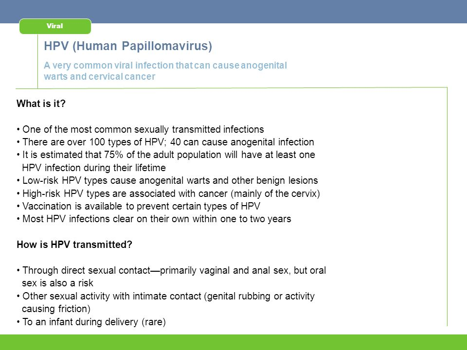 sexually transmitted infections - ppt download, Human Body