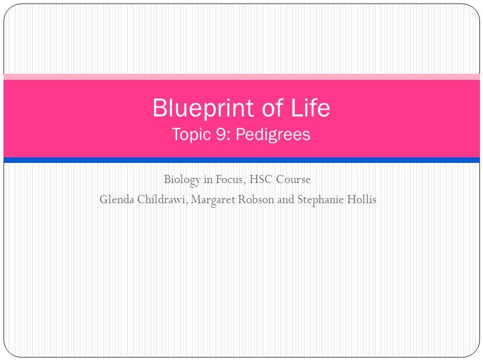 Blueprint of life topic 9 pedigrees ppt video online download blueprint of life topic 9 pedigrees malvernweather Image collections