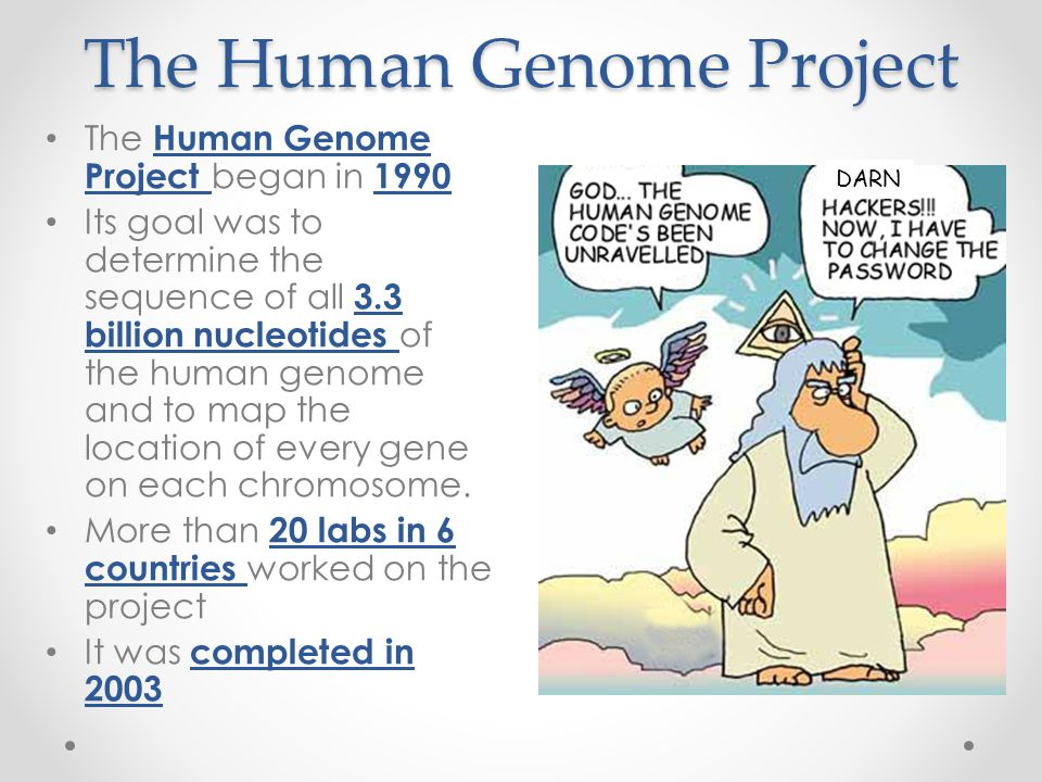 The human genome project 1990 2003
