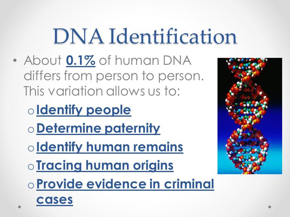 chapter 13 gene technology