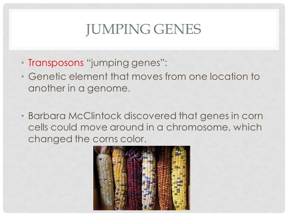 Jumping genes Transposons jumping genes :