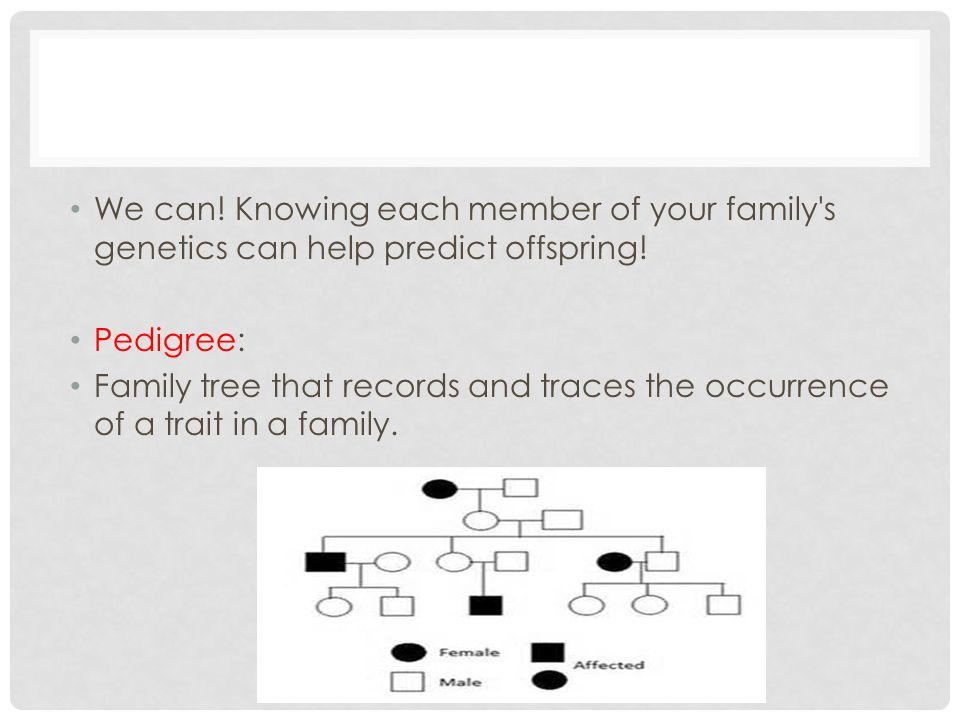 We can! Knowing each member of your family s genetics can help predict offspring!