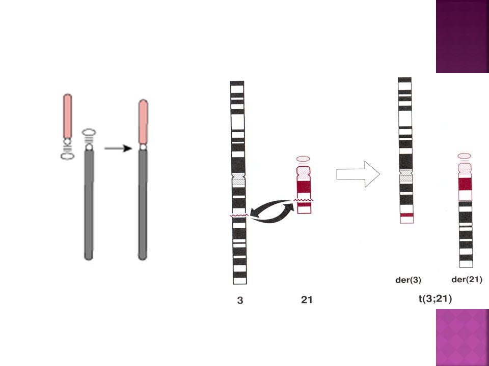 Genetics Genetics is the study of genes Genes; sequences ...