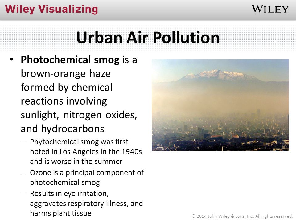 Compare and contrast essay pollution in the oceans