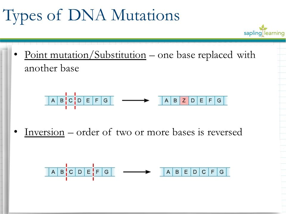 DNA Mutations Biology 6(E). - ppt video online download