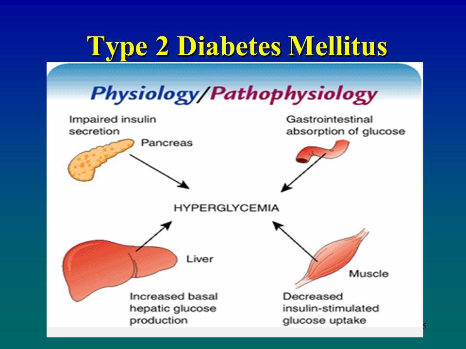 Anatomy of diabetes mellitus