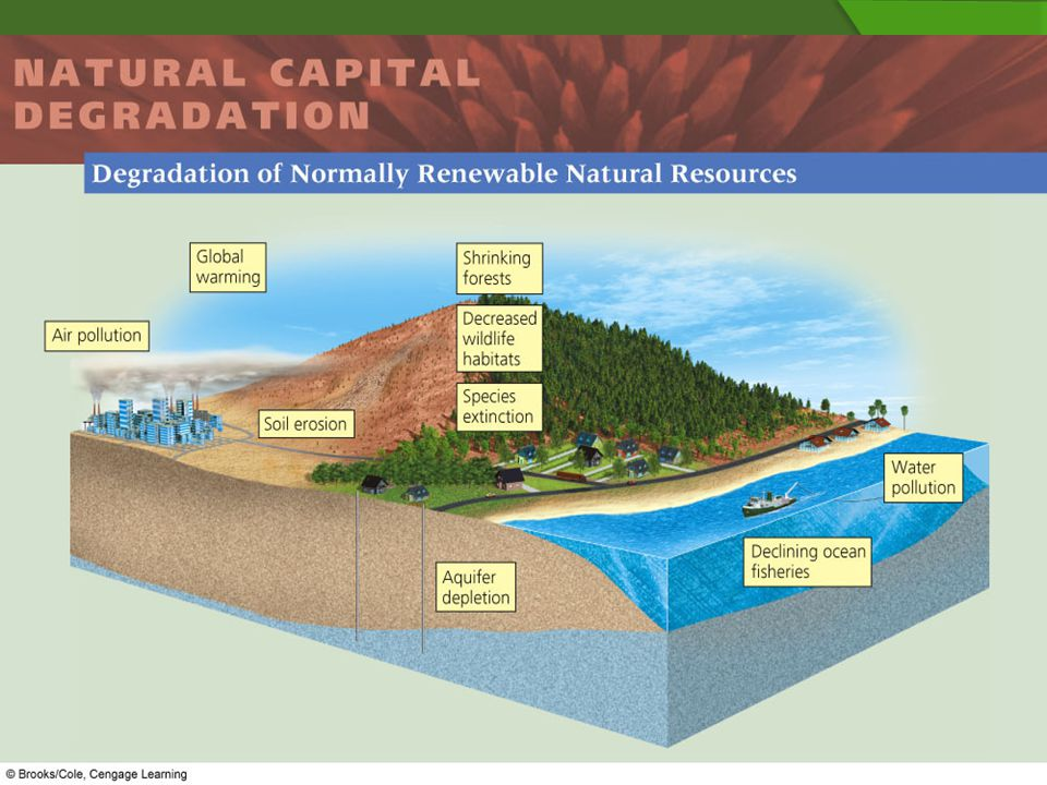 What Are Some Natural Resources We Are Depleting
