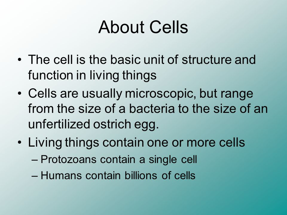 About Cells The cell is the basic unit of structure and function in living things.
