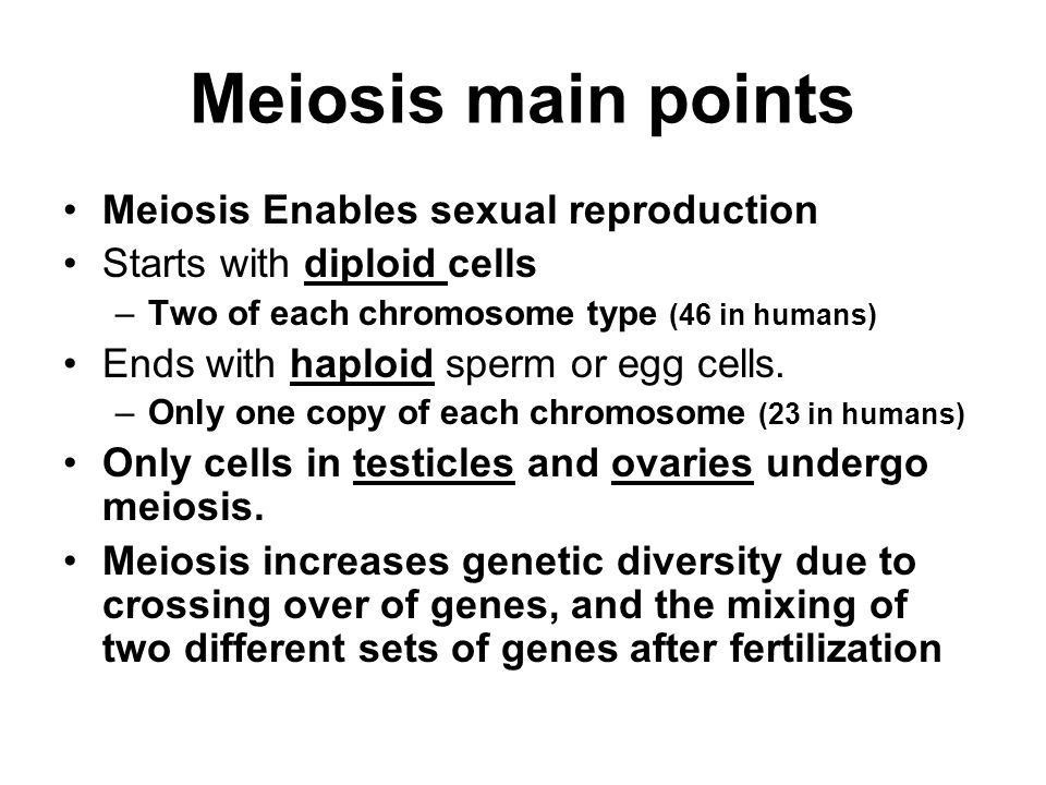 Meiosis main points Meiosis Enables sexual reproduction