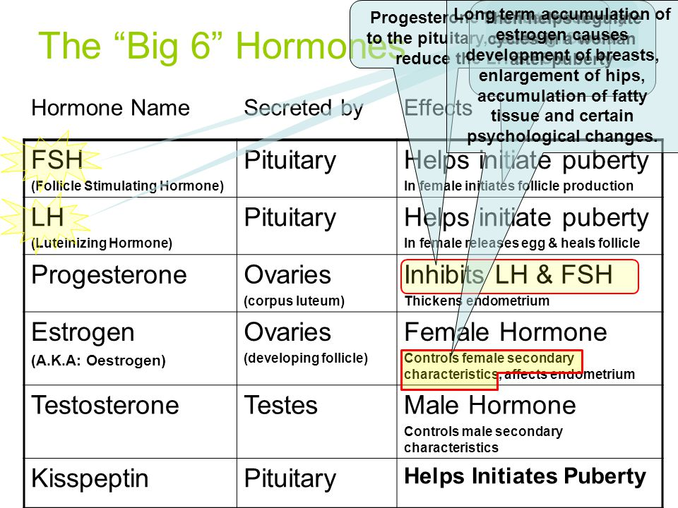 The Big 6 Hormones FSH Pituitary Helps initiate puberty LH