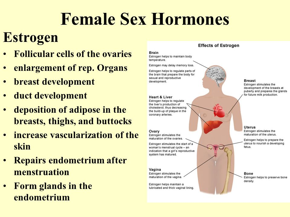 Are hrt progesterone orgasm for that